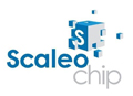 scaleo-chip-2